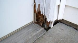 Anatomy of a house understanding the components of your - Repairing wood rot on exterior door ...