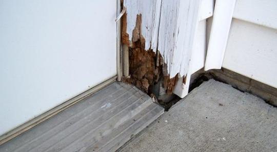 Exterior Door Frame Repair At Rotted Door Frame Termites